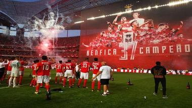 بنفيكا يتوج رسميا بلقب الدوري البرتغالي