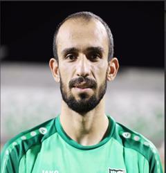 هادي المصري