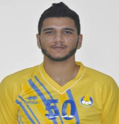 طارق حامد عبدالمجيد