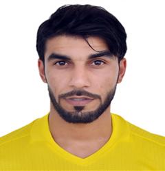 حمد محمد الحمادي